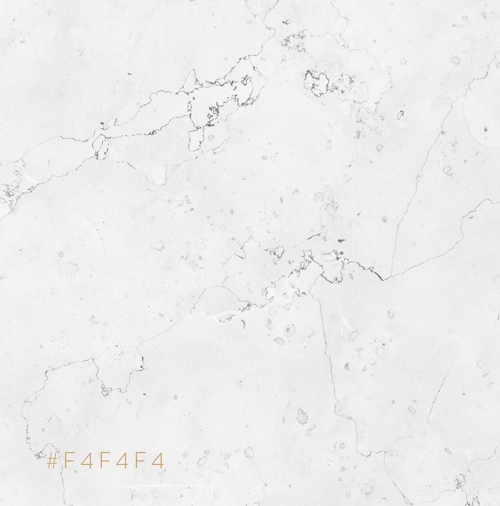 COR 02 02 - Snew