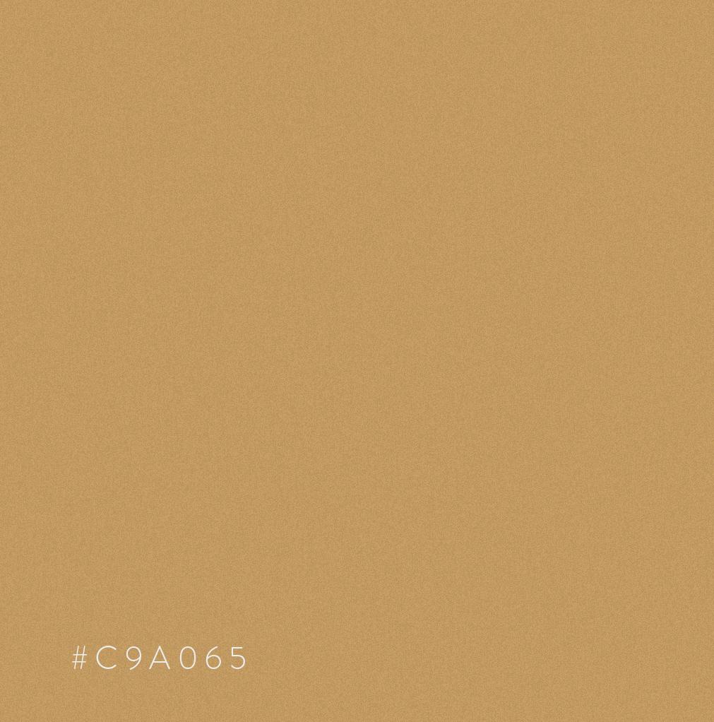 COR 02 03 - Snew